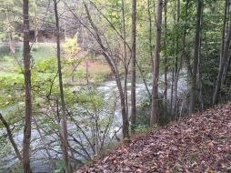 Looking right at Decker Creek rapids