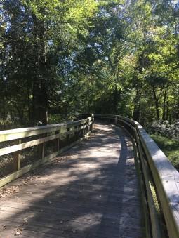 Thirty briges and boardwalks